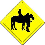adaptive riding